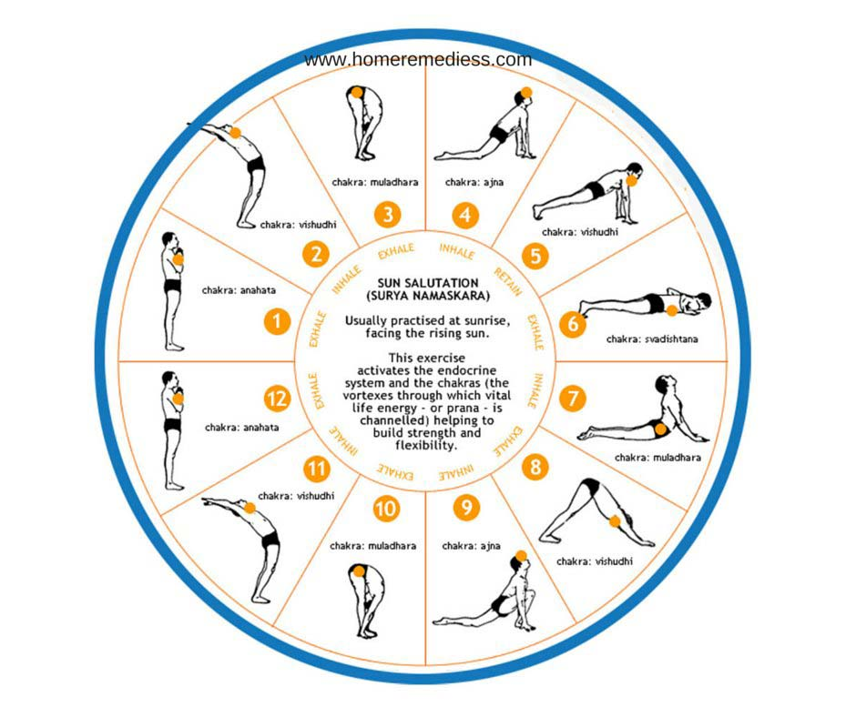 Surya namaskar steps for weigh loss