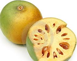 Bael fruit picture
